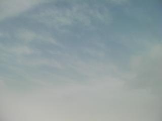 SANY1302.JPG